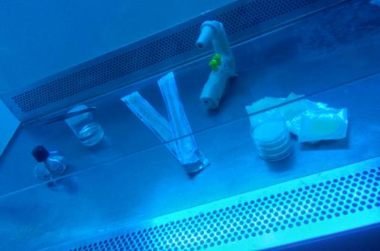 ensaios_biologicos